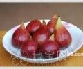 出售全球四大水果-无花果